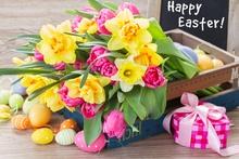 Frohe Ostern von Gefahrgut Online Center